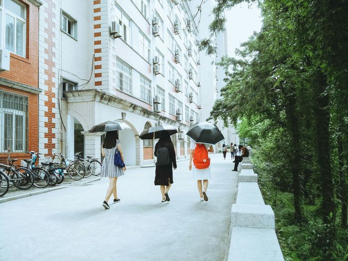 Rear View Of Woman Holding Umbrella And Walking On Street