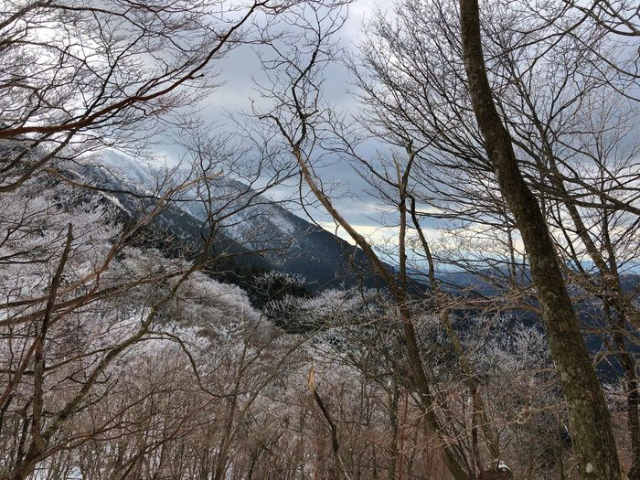 Winter view. Lowsaturation 山岳 明神平 Japan 山 雪 雪景色 冬景色 樹氷 登山 Winter Ice Frost Frosted Nature Mountain Snow Cloudy Bare Tree Nature Tree Beauty In Nature Outdoors No People Water Tranquility Scenics Forest Landscape Branch Sky