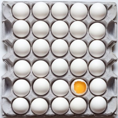 Eggs Egg Egg Carton Directly Above Standing Out From The Crowd White Color Close-up Food Freshness Arrangement No People Yolk Grade A