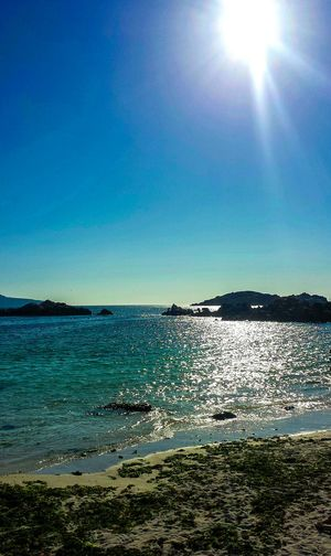 Sea Beach Sunlight Blue Horizon Over Water Beauty In Nature Nature Sun No People Water Southamerica Paradise ❤ The Great Outdoors - 2017 EyeEm Awards Landscape Landscape_Collection Travel Destinations Neighborhood Map Chile Eyeemphotography Photo Of The Week Stone Seascape Holiday Vacations Rock