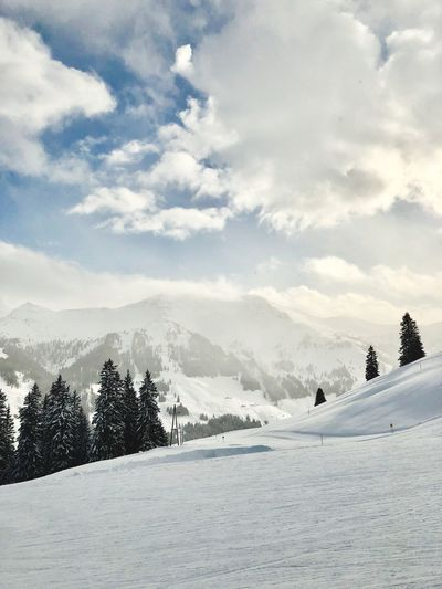 Ski Snow Winter Cold Temperature Weather Mountain Beauty In Nature Nature Skiing Tranquility Landscape White Color Sky Tree Extreme Sports No People Tranquil Scene Range Outdoors Day Scenics