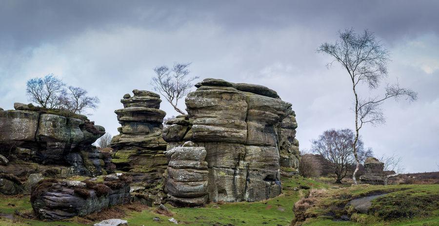 Grit rock outcrop at Brimham Rocks Yorkshire Brimham Rocks Brimham Rocks Yorkshire Lone Trees Moody Sky Moody Sky Atmospheric Mood Wintertime Yorkshire Brimham Moor Brimhamrocks Grit Rock Waethered