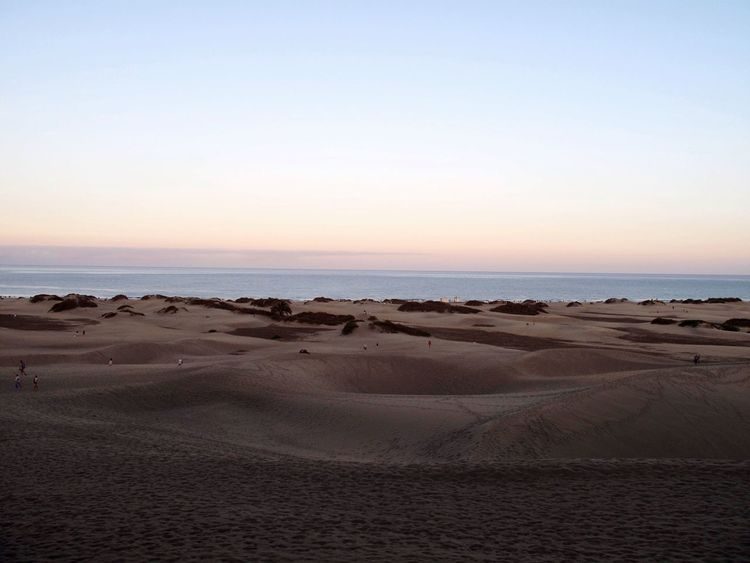 Tranquil Scene Sunset Horizon Over Water Sand Sea Beauty In Nature Beach Clear Sky Sand Dune Travel Destinations Gran Canaria Canary Islands Dunes De Maspalomas Playa Del Ingles Holiday Discover The World Tranquility Non-urban Scene No People