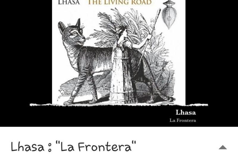Lasha Forontera..... ❤