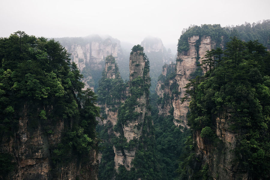 Limestone karst landscapes from the 'Avatar' park in Zhangjiajie, Hunan Province, China Amazing Avatar Awesome Beautiful China Cloudy Foggy Gorgeous Incredible Karst Landscape Limestone Misty Monument Mountain MOVIE Nature Pinnacle Sandstone Stunning Tall Tranquility Unbelievable Unique Unreal The Great Outdoors - 2017 EyeEm Awards