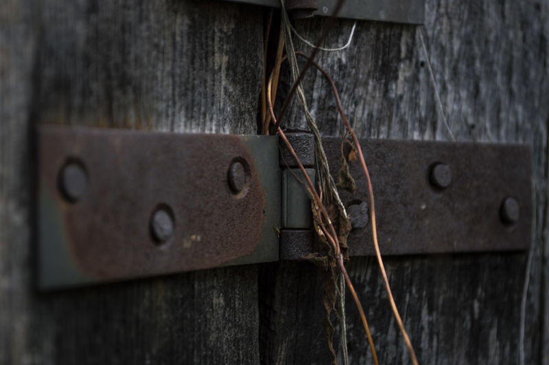 Close-Up Of Old Rusty Hinge On Wooden Door