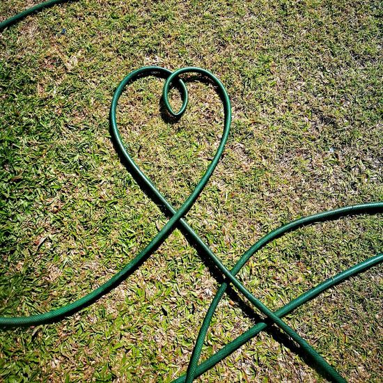 Love Heart Shape Heart ❤ Hose Full Frame Pattern High Angle View Backgrounds Circle Grass Close-up Green Color