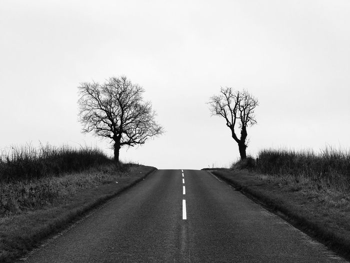 Road amidst bare trees on field against clear sky