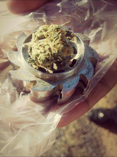 High Weed Kush