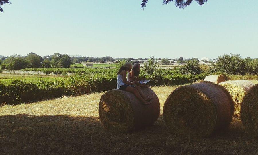 Farm Happiness Friends Martinafranca Balledifieno