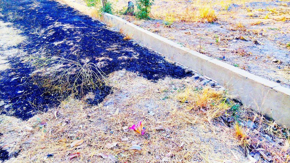 Dryseason Landscape Terrain Africa Day To Day