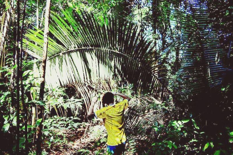 Share Your Adventure Brazil Amazon Trip