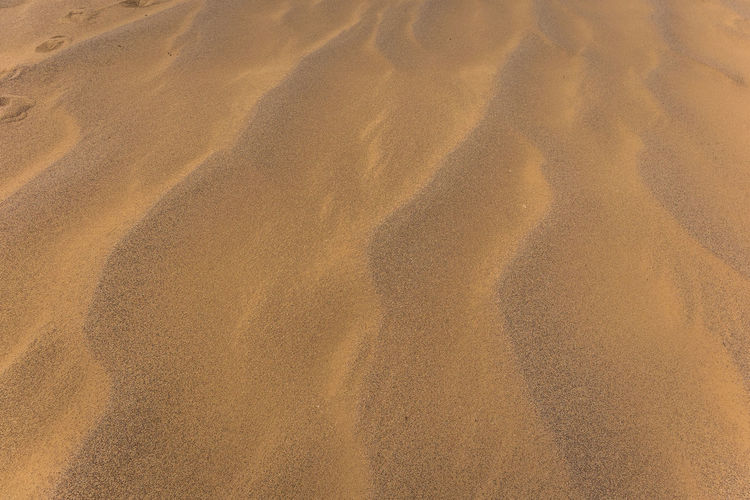 Mongolia Sand Land Beach Full Frame Backgrounds High Angle View Sand Dune Tranquility Nature Pattern No People Beauty In Nature Desert Day Sunlight Wave Pattern Landscape Scenics - Nature Arid Climate Climate Outdoors