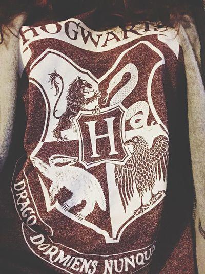 Hogwarts I'm Not A Muggle