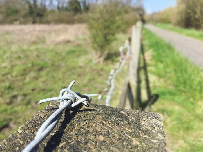 Barb Wire Post