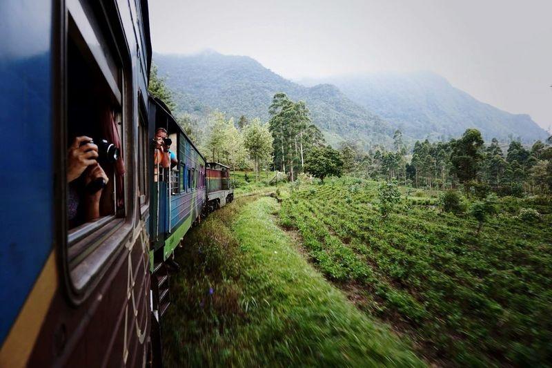 Sri Lanka Train Kandy To Ella Nature Scenic