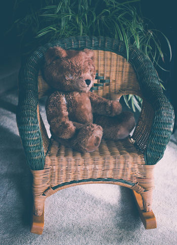Bygone Days Bygone Times Childhood Childhood Memories Children Close-up Days Gone By Dilapidated Forgotten Indoors  Left Alone Left Behind Memories Memory One Raggedy Showcase March Stuffed Animals Stuffed Toy Ted E Bear Teddy Bear The Week On EyeEm Tranquility Vintage Worn Out