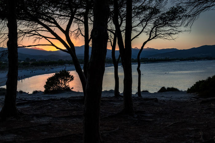 Blick über Budoni Beach im Sonnenuntergang End Of The Day EyeEmNewHere Sardinia Sardegna Italy  Beach Beauty In Nature Budonibeach Evening Atmosphere Forest Landscape Nature No People Outdoors Pinewood Scenics Sea Silence Of Nature Silent Moment Silhouette Sky Sunset Tranquil Scene Tranquility Tree Tree Trunk Water