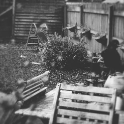 Messedupjournal Afterthestorm  Backyard Shed Chairs Slide