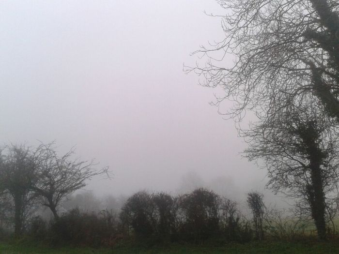 this afternoon's hazy horizon #horizon #haze #fog #amlp Horizon #amlp This Afternoon's Horizon Fog