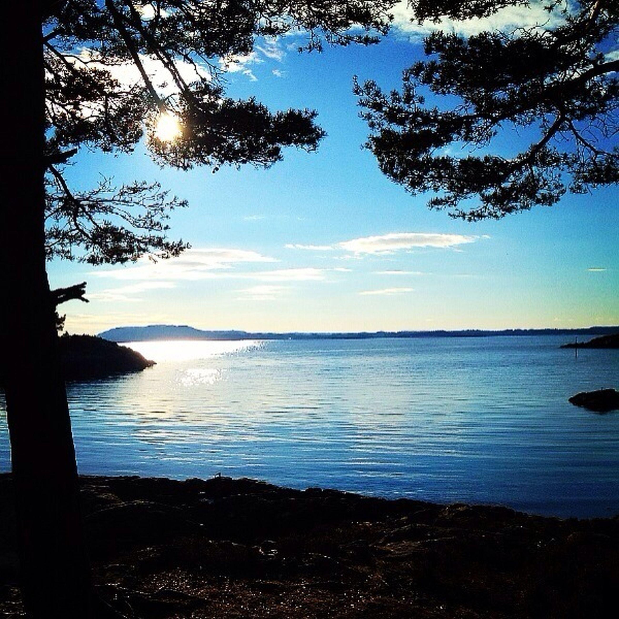 water, tranquil scene, tranquility, scenics, beauty in nature, sky, sea, tree, lake, nature, sun, reflection, sunlight, idyllic, horizon over water, silhouette, shore, calm, blue, lakeshore