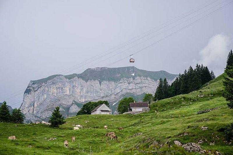 Stayandwander Bommen Aescher Ebenalpbahn