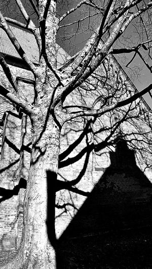 Light And Shadow Church Blackandwhite Taking Photos