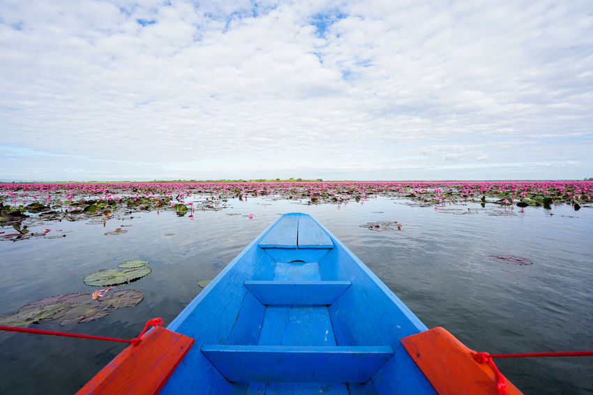 Water Sky Cloud - Sky Nature Day Nautical Vessel Beauty In Nature Transportation Blue Sea Mode Of Transportation No People Outdoors Scenics - Nature Tranquility Tranquil Scene Flowering Plant Architecture Floating On Water Kumphawapi Red Lotus In Thailand Red Lotus Thailand Red Lotus Lake ทะเลบัวแดง