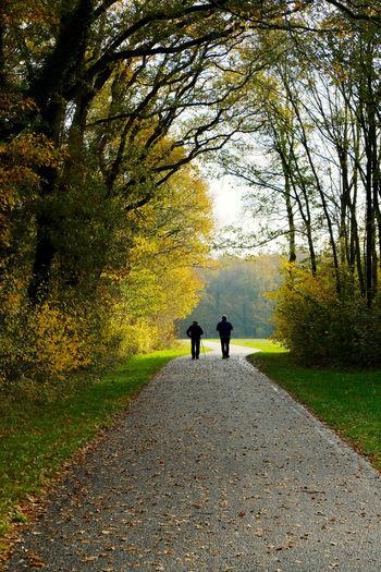 Rear view of people walking on footpath by road