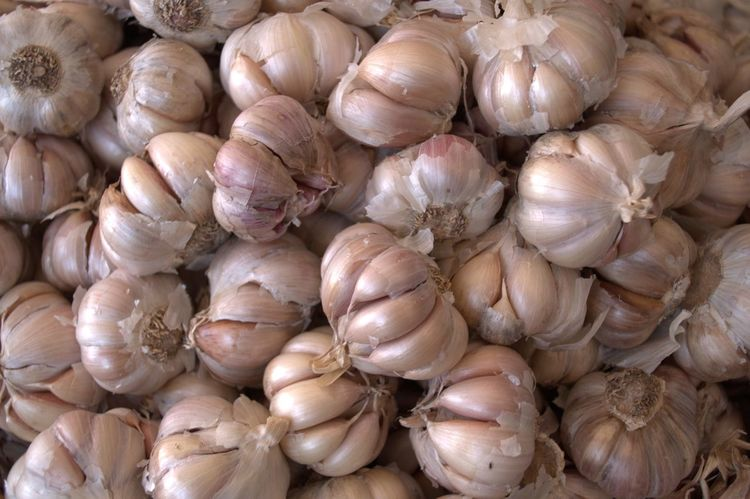 Backgrounds Close-up Farmers Market Food Freshness Full Frame Garlic Garlic Bulbs Healthy Eating Large Group Of Objects No People Spices Spicy Food Stories
