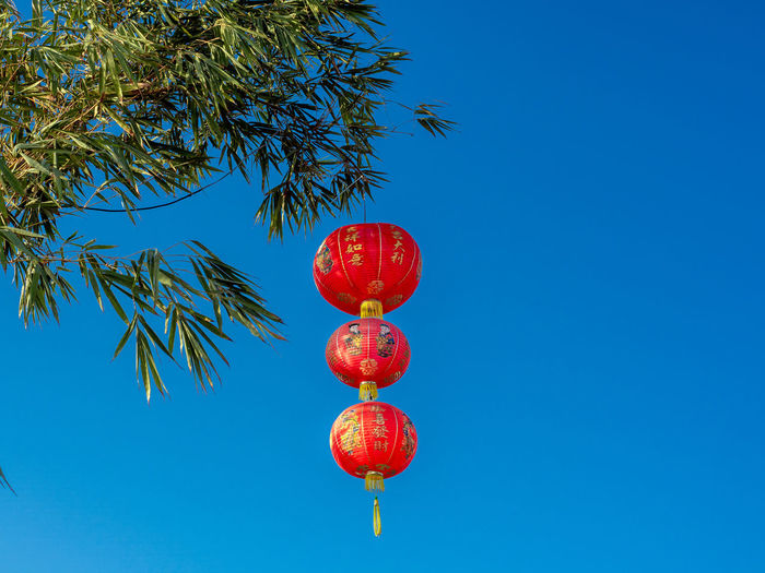 Low angle view of red lanterns hanging against clear blue sky