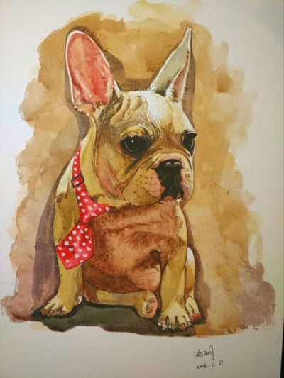 Looksgood Animal Drawing My Drawing Watercolor 😘