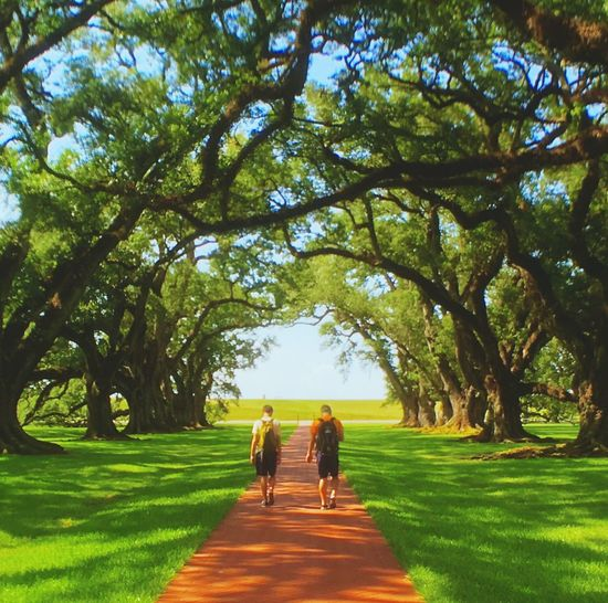 Adventure Club Showcase July People Together Oak Trees Teen Boys Walking On A Path Hanging Out Taking Photos Taking Photos Hanging Out Near New Orleans Plantation