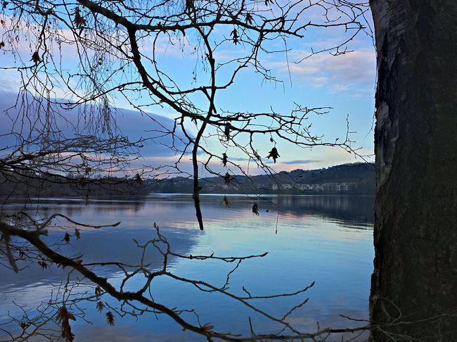 Hardenbergufer, Herbstspaziergang The Purist (no Edit, No Filter) Ruhrgebiet Baldeneysee Landscape