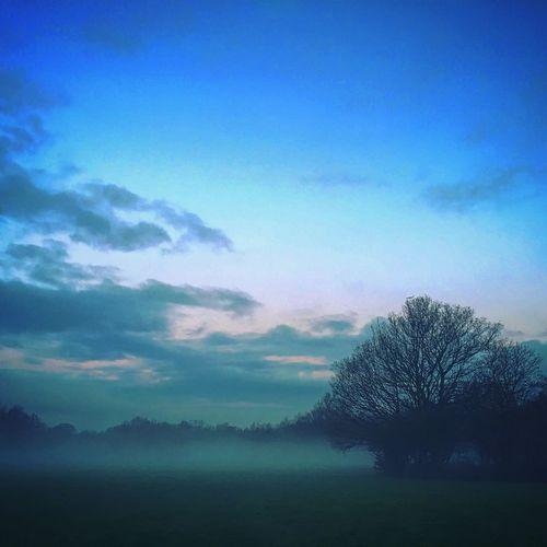 Sunrise Morning Foggy Morning