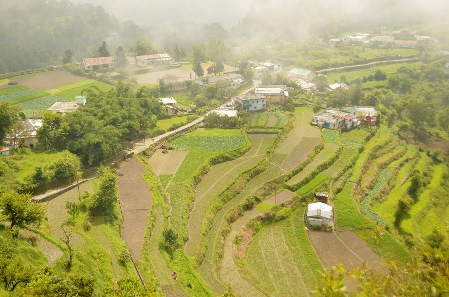 Agriculture Rural Scene Landscape Aerial View Terraced Field Step Farming