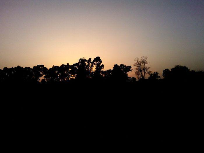 Silhouette NokiaLumia800 Sunset Silhouettes