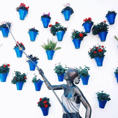 Art Is Everywhere Flower Human Arm Day Multi Colored Only Women Patios De Córdoba