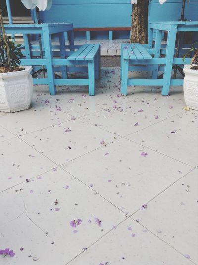 ??? Blue Flowers Alone MySchool