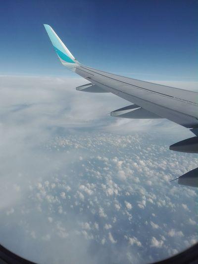 up to Mallorca
