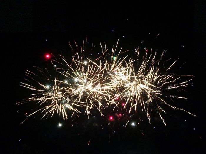 Firework Fireworks Fireworks In The Sky Night Nightphotography Night Lights Light Show Showcase August Photography Photo