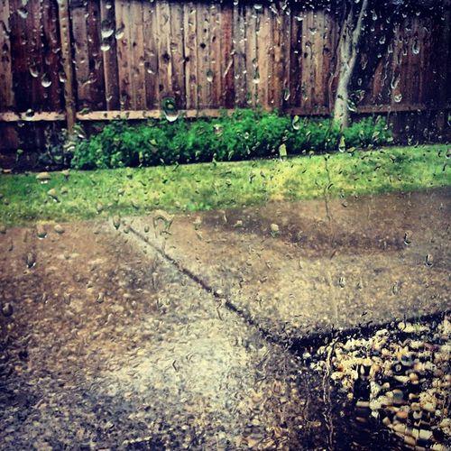 Rain. ☔☁⚡