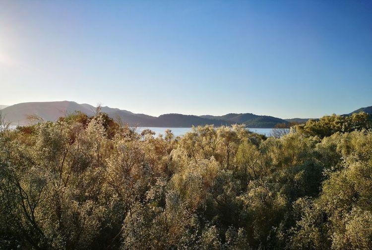 Troia Partner Eyemphotography Eyem Best Shots Premium Collection Mountain Clear Sky Tree Sunlight Sky Landscape Mountain Range