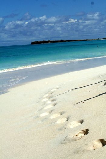 Beach Beautiful Antigua Carribean Travel Nature Blue Water Landscapes With WhiteWall Foodprints Foodprint Foodprints In Sand Blue Wave