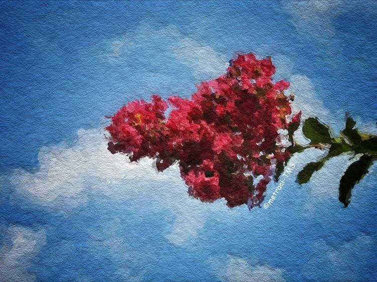 Great Skot! NEM Painterly NEM Clouds EyeEm Best Shots - Nature