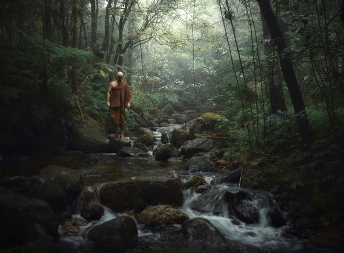 Forest monk Outdoors Flowing Water Standing Real People Rock - Object Water Solid Mammal Motion Beauty In Nature Day People WoodLand Rock Full Length Nature Plant Land Forest Tree Buddha Buddhist Buddhist Monks Buddhist Monk
