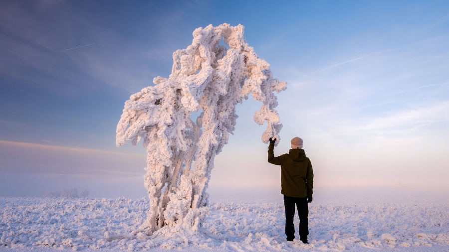 Rear View Of Man Holding Frozen Tree On Field During Sunset
