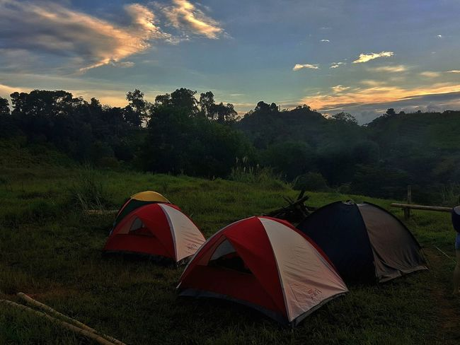 Rooms Night Landscape Camping Adventure Red Forest Tent Outdoors No People Tree Scenics Sky Star - Space Astronomy Eyesight Nature Space Tents Travel Destinations Philippines Mountain Camping Vacations Beauty In Nature Lost In The Landscape