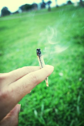 Relaxing Smoking Weed Weed Smoker Perfect Joint