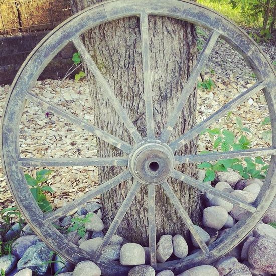 Antique Country Country Life Day EyeEmNewHere Outdoordecoration Outdoors Summer Wagon Wheel Wheel